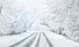 Journey through Siberia. White road. Siberian winter Stock Photos
