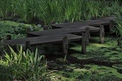 Bridge over quiet, green water. Journey symbol expressed in wood bridge over tranquil, green waters.  Location is Nitobe Memorial Garden in Vancouver, British Stock Images