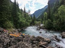 Journey through the wild nature of the Altai. Coniferous forests and the valley stock image