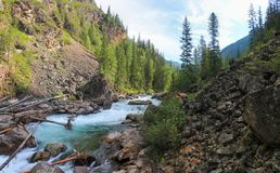 Journey through the wild nature of the Altai. stock photo