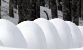 Jours d'hiver Photo stock