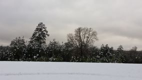 Jours de neige en Arkansas Photos stock