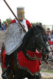 Jouster Royalty Free Stock Image