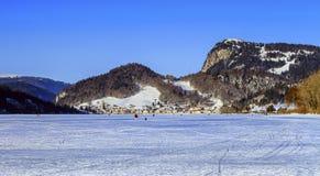 Joux,沃州, Switzelrand冻湖  库存照片