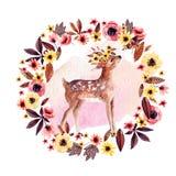 Jovem corça dos cervos da aquarela entre as flores isoladas no fundo branco Fotos de Stock