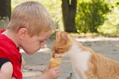 A jovem criança alimenta a gato seu cone de gelado Fotos de Stock Royalty Free