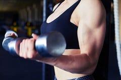 Jovem mulher atlética que faz um exercício da aptidão com pesos Imagem de Stock