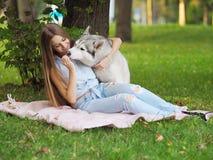 A jovem mulher atrativa abraça o cão engraçado do cão de puxar trenós siberian Imagem de Stock