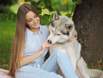 A jovem mulher atrativa abraça o cão engraçado do cão de puxar trenós siberian Imagens de Stock