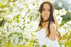 Jovem mulher bonita cercada por flores da Apple-árvore fotos de stock royalty free
