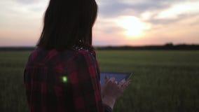 Jovem mulher bonita com funcionamento do tablet pc no campo de trigo no por do sol A menina usa uma tabuleta, planos para colher video estoque