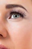 Jovem mulher bonita com pele perfeita e composição macia Fotografia de Stock