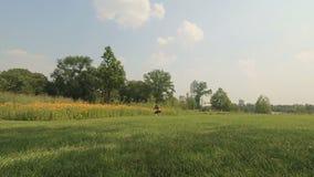 A jovem mulher bonita está andando em um prado do verão filme