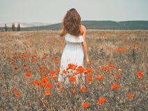Jovem mulher bonita no campo da papoila Imagens de Stock Royalty Free