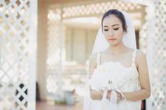 jovem mulher bonita no dia do casamento no vestido branco no jardim Fotos de Stock Royalty Free