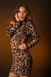 Jovem mulher bonita no vestido do leopardo Imagem de Stock Royalty Free