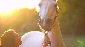 Jovem mulher bonita no vestido vermelho que acaricia o cavalo branco gracioso no por do sol Chicote de fios, cavalo do focinho, j filme