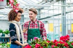 Jovem mulher bonita que fala com o trabalhador amigável no florista imagem de stock
