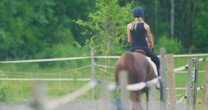 Jovem mulher bonita que monta seu cavalo árabe na exploração agrícola filme