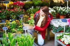 Jovem mulher bonita que seleciona o mercado das flores Fotos de Stock Royalty Free