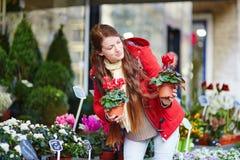 Jovem mulher bonita que seleciona o mercado das flores Fotografia de Stock