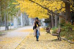 Jovem mulher bonita que usa seu telefone celular ao andar através do parque durante o outono fotos de stock