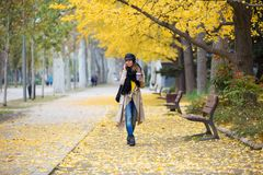 Jovem mulher bonita que usa seu telefone celular ao andar através do parque durante o outono imagens de stock royalty free