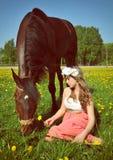 A jovem mulher bonita senta-se no campo com um cavalo Imagens de Stock Royalty Free