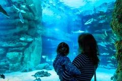Jovem mulher com relógio da criança um peixe no aquário Fotografia de Stock