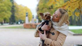 Jovem mulher com um cão pequeno que anda em um parque do outono video estoque