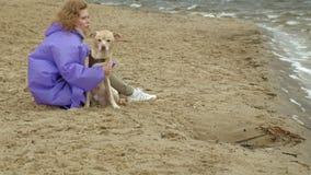 Jovem mulher com um c?o na praia pelo rio vídeos de arquivo
