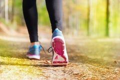 A jovem mulher corre no outono onde o por do sol da floresta se ilumina Imagem de Stock Royalty Free
