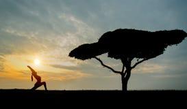Jovem mulher da ioga da silhueta com árvore sozinha imagens de stock