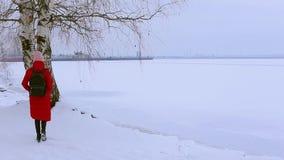 A jovem mulher da opinião da parte traseira vem ao penhasco e aos olhares na paisagem do rio congelado video estoque