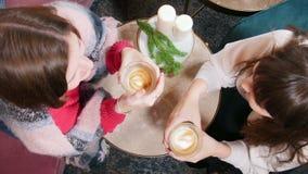 Jovem mulher dois que senta-se no café e no café bebendo Vista superior vídeos de arquivo