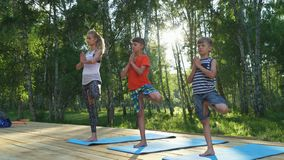 Jovem mulher e crianças que executam a ioga video estoque