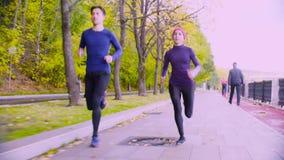 Jovem mulher e homem que correm no parque outono vídeos de arquivo