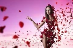 Jovem mulher e  pétalas cor-de-rosa fotos de stock