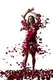 Jovem mulher e  pétalas cor-de-rosa imagens de stock royalty free
