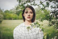 Jovem mulher em um dressstay quadriculado perto de uma ?rvore de floresc?ncia fotografia de stock royalty free