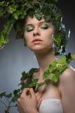 Jovem mulher em uma grinalda das folhas Foto de Stock