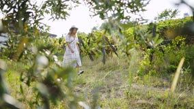 Jovem mulher entre o campo de plantas de videira com uvas filme