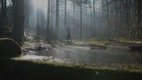 A jovem mulher está andando lentamente na floresta com uma cesta video estoque