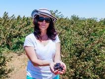 A jovem mulher está e realiza em suas mãos diversas bagas maduras de corintos vermelhos e pretos no fundo de arbustos verdes Fotos de Stock Royalty Free