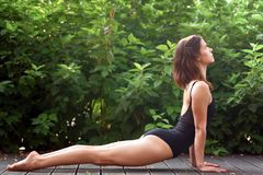 A jovem mulher está praticando a ioga fotos de stock royalty free