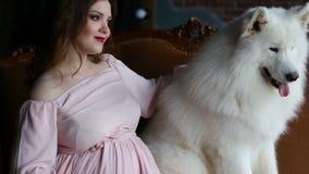 A jovem mulher está sentando-se em um sofá e pet seu cão de protetor branco grande video estoque
