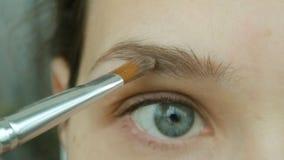 A jovem mulher faz suas sombras das sobrancelhas Composição natural do olho em casa vídeos de arquivo