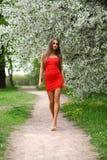 Jovem mulher feliz no vestido vermelho contra o flo da mola do fundo Imagem de Stock Royalty Free