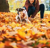 Jovem mulher feliz que realiza o cão fora no outono Imagens de Stock Royalty Free