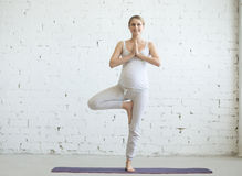Jovem mulher grávida que faz a ioga pré-natal Pose da árvore fotos de stock